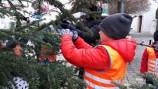 Vánoční stromy v Černošicích 2020