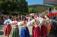 Folklorní soubor : Pramínek načernošické pouťi