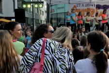 Černošický karneval 2014